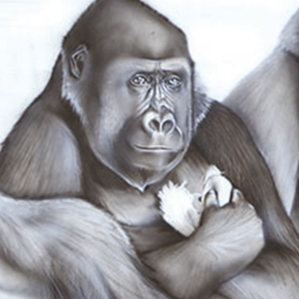 Gorilla in Zoo painting NelumboArt