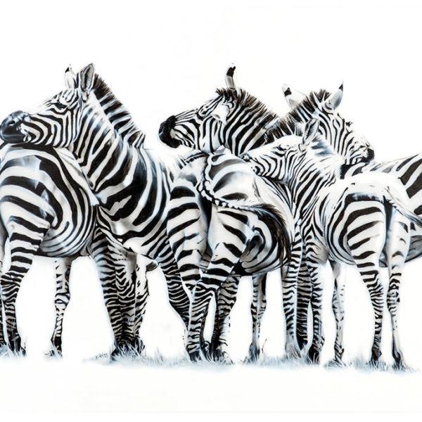 zebras in the mara painting NelumboArt