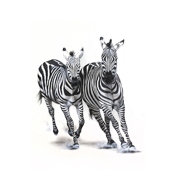 zebra painting NelumboArt