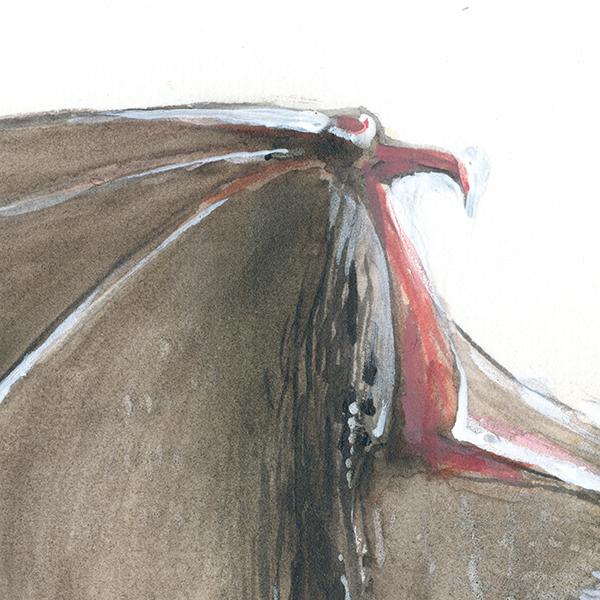 Große Bartfledermaus